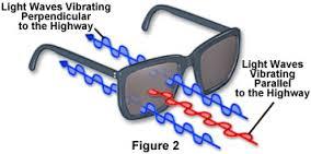8526e5e650 Τα γυαλιά ηλίου περιέχουν πολωτικά φίλτρα προσανατολισμένα κάθετα στο  σκελετό των γυαλιών έτσι ώστε να αποκλείουν το οριζόντιο πολωτικό φως.